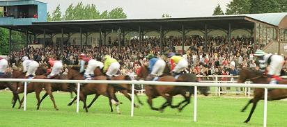 Tipperary Racecourse launches its new website