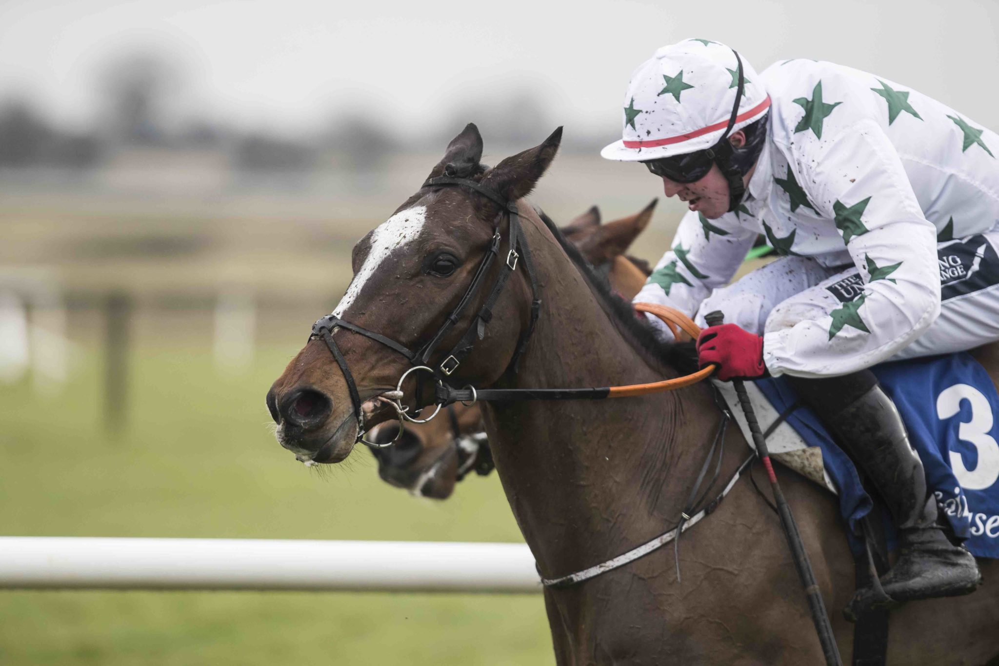 Tipperary Racing News – July 10th