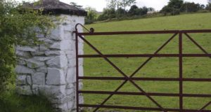 MINISTER CREED HAS LEFT ONE IN FIVE TAMS FARMERS IN LIMBO WITH FAILURE TO APPROVE APPLICATIONS