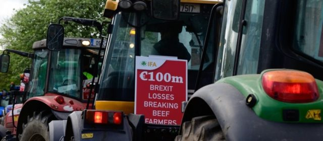 URGENT CHANGES NEEDED IN MINISTER'S PROPOSED €100M BEEF SCHEME