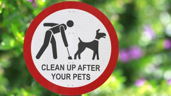 Thurles to launch major anti dog fouling/litter campaign