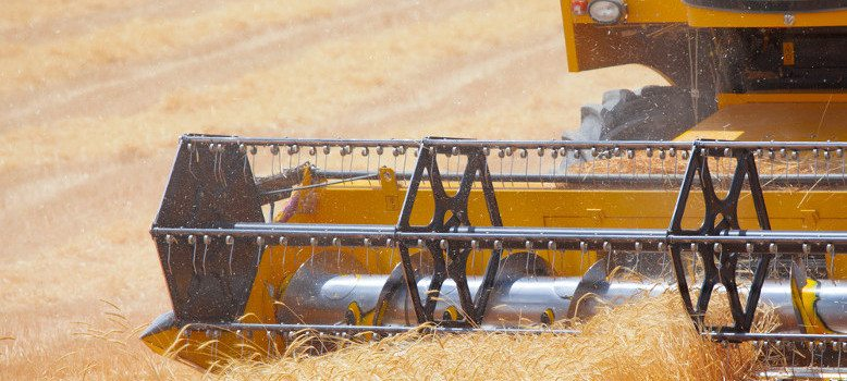 GRAIN GROWERS NEED A STRONG PRICE